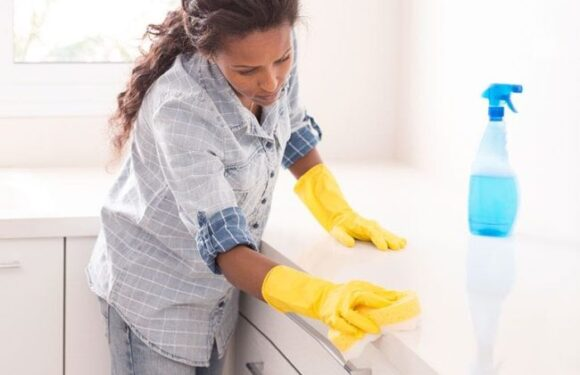 Rug and Carpet Cleaning Tips