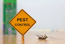 Why You Should Hire a Pest Control Service